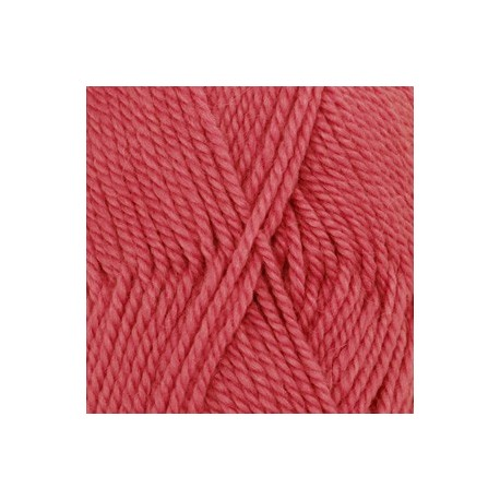 Nepal 8909 - coral