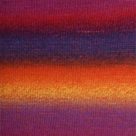 Delight 12 - arco-íris