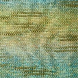 Nazca 951