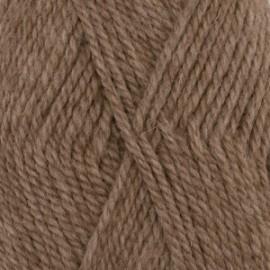 Nepal 0618 - camelo
