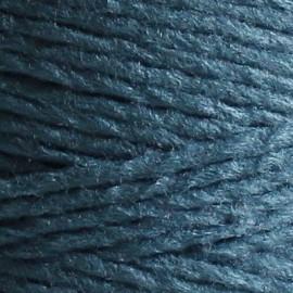 Veggie Wool (100g) 10 - océano