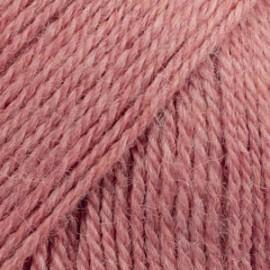 Flora 24 - rosa fresa