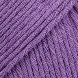 Cotton Light 13 - violeta